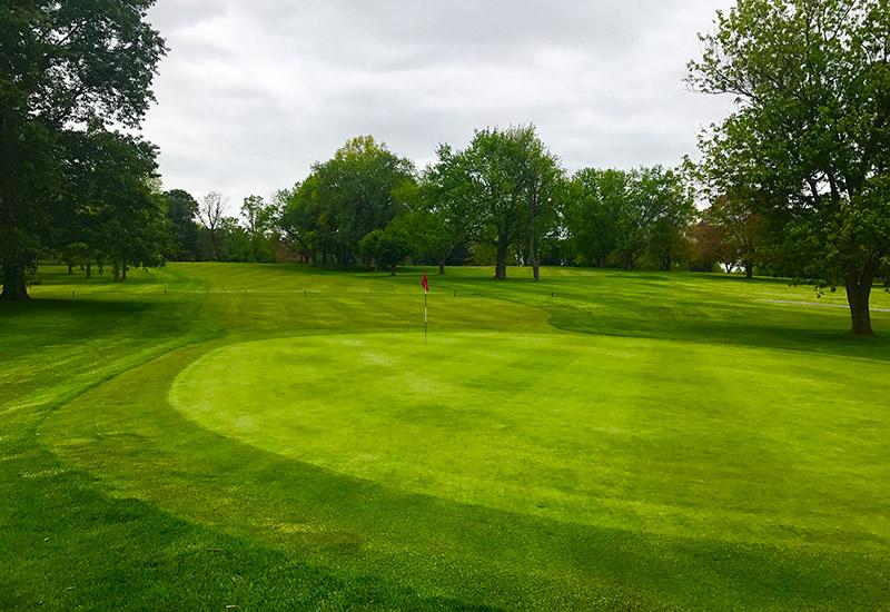 Buhl Park Golf