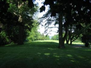Buhl Park Golf Course Hole 11