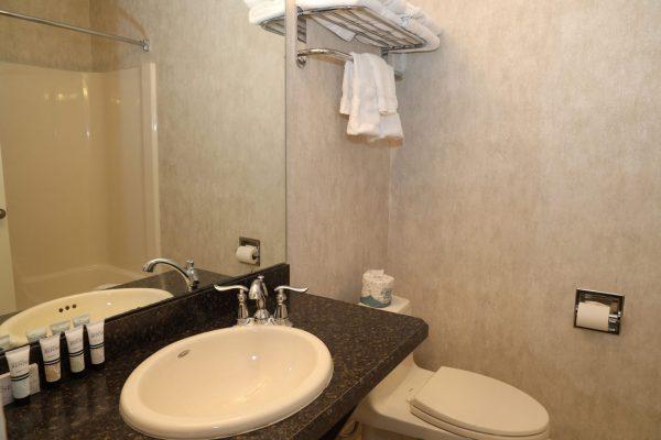 Luxury-Double-Bathroom