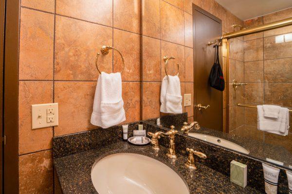 Premiere-King-Bathroom